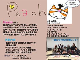 Peach_poster.jpg